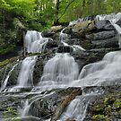 Lower Hornsbeck Creek Falls by Stephen Vecchiotti