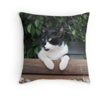 Scampurr July 4, 2011 Throw Pillow
