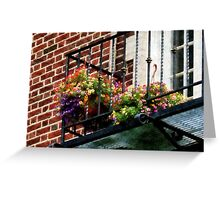 Hanging Basket on Fire Escape Greeting Card