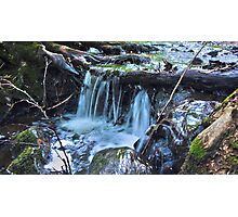 HDR Forrest Waterfall Photographic Print