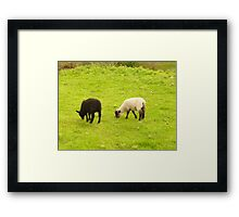 Best friends. Framed Print