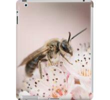 Andrenidae iPad Case/Skin