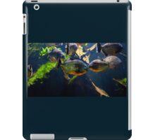Red bellied piranha or red piranha iPad Case/Skin