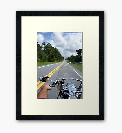 Ocala National Forest Framed Print
