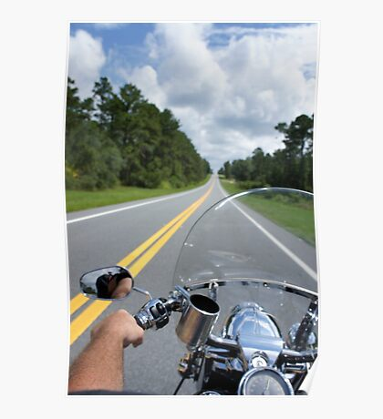 Ocala National Forest Poster