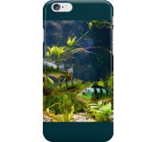 Aquarium striped fishes group iPhone Case/Skin