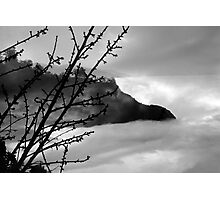 Mourning her loss Photographic Print