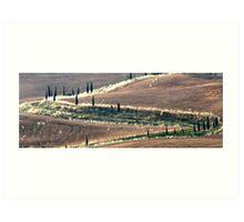 Zigzag-Tuscany Art Print
