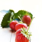 Freshly Picked Strawberries by ~ Fir Mamat ~