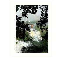 Above the falls, Brazil Art Print