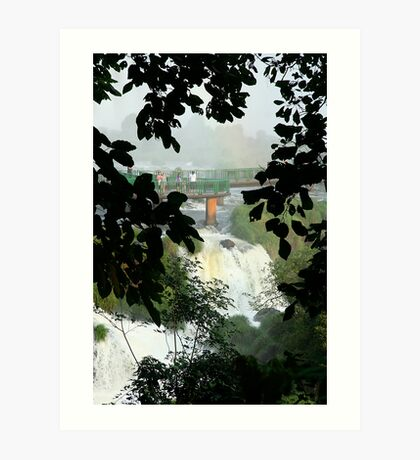 Above the falls, Brazil Art Print