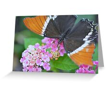 Brown and Black Butterfly on Lantana Flowers Greeting Card