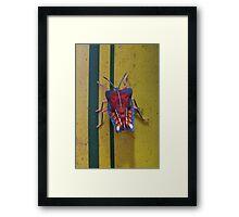 Edible stink bug on bamboo, Thailand Framed Print