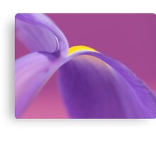 Iris Flower Abstract 3 Canvas Print
