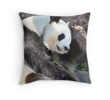 Kung Fu Panda Throw Pillow
