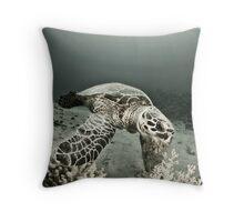 Reptile world, Hawks-bill turtle feeding Throw Pillow