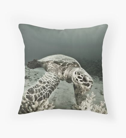 Reptile world, Hawks-bill turtle feeding Throw Pillow