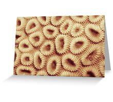 Hoops coral Greeting Card