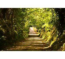 Killeek Lane Photographic Print