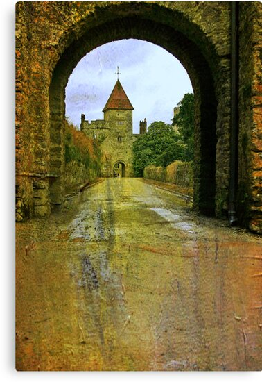 Lismore Castle Gate by Martina Fagan