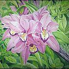 Wild Flower by seanmerod