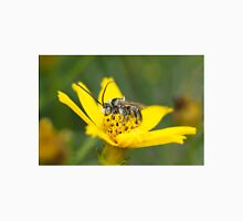 Eucerini Bee on Bidens flower Unisex T-Shirt