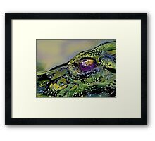 The Hand That Feeds Me Framed Print