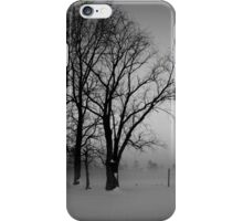 Trees in the Snow iPhone Case/Skin