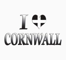I Love Cornwall by MadTogger