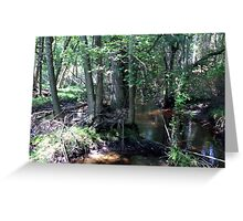 Naturescape 73 Greeting Card