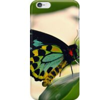 Cairns Birdwing Butterfly (Ornithoptera priamus) iPhone Case/Skin