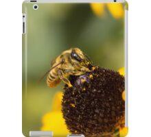 Megachile Bee on Black-eyed Susan iPad Case/Skin