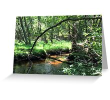 Naturescape 75 Greeting Card