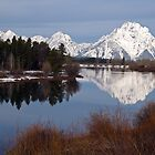 Oxbow Bend by Eivor Kuchta