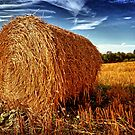Hay Bale by Paul Shellard