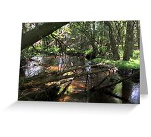 Naturescape 77 Greeting Card