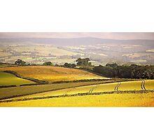 South Hams Landscape Photographic Print