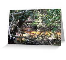 Naturescape 79 Greeting Card