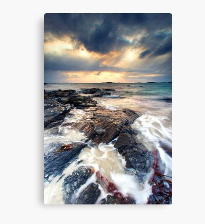 Sanna Storms II Canvas Print