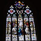 Savannah Stained Glass - St John the Baptist Cathedral by Sherri Fink