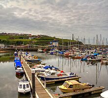 Whitehaven Marina by Tom Gomez