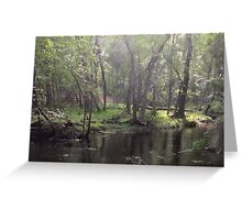 Naturescape 63 Greeting Card
