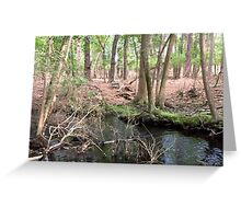 Naturescape 64 Greeting Card