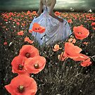 The Poppy Field  by Smudgers Art