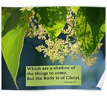 But the Body is of Christ ~ Colossians 2:17 Poster