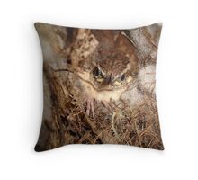 INDEPENDENCE DAY! Throw Pillow