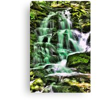 Great Hollow falls in HDR Canvas Print