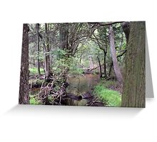 Naturescape 87 Greeting Card