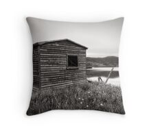 Evening at Trinity Throw Pillow