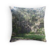 Settlers Quarry  Throw Pillow